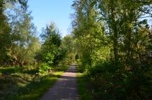 urdenbach trail