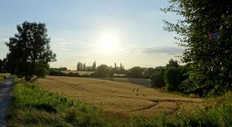 evening sun over russet fields in upper stinderbrook valley