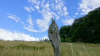 driftwood totem near deilbach