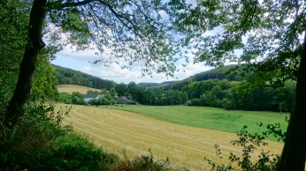 green and brown field niederbachtal near velbert