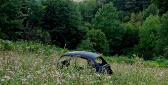 vw beetle in field near deilbach